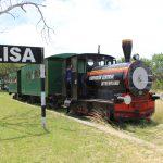 tren villa elisa