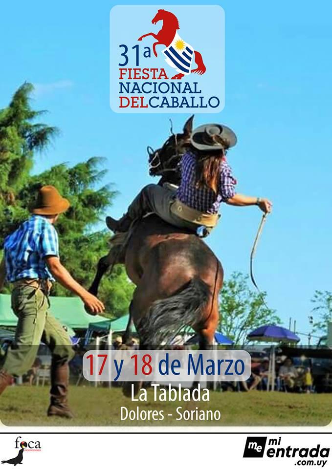 fiesta del caballo